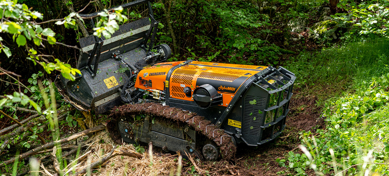 remote controlled tools carrier - robomidi - forestry head - forestry works - energreen professional machines